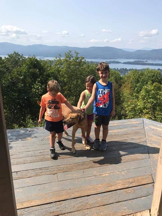 Pilot Knob is a great hike to try out with the kids! More information…